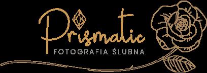 prismatic logo